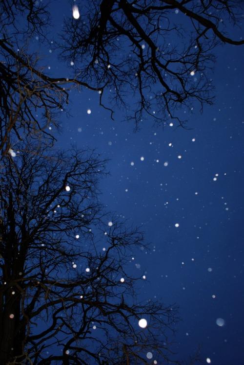 snowy-sky1